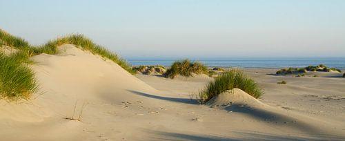 Strand Terschelling von René Vos