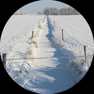 Wijds winterlandschap van Wilma Overwijn