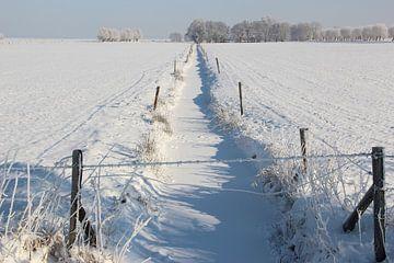Große Winterlandschaft von Wilma Overwijn