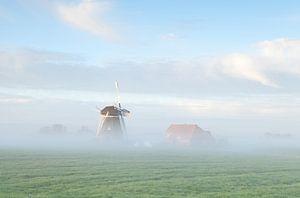 Dutch farmland
