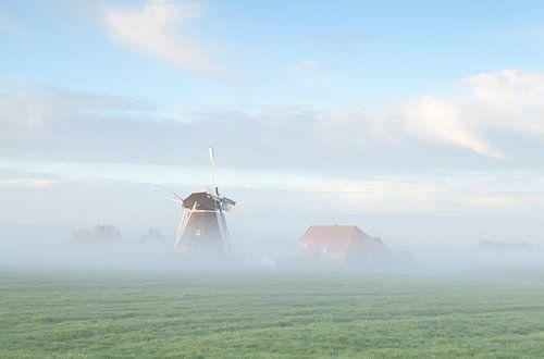 Dutch farmland  van Olha Rohulya