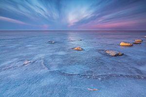 Frozen lake Harderwijk van
