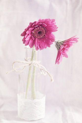 In a Vase.