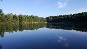 BLUE WATER LAKE FOREST von Ivanovic Arndts