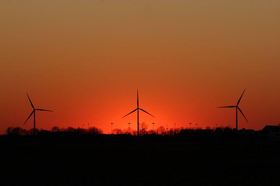 Windmolens Sunset