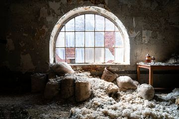 Sacs de laine abandonnés. sur Roman Robroek