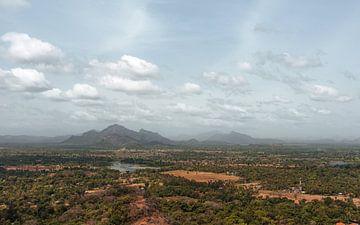 Sri Lankan Dream van