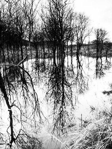 Mirror von Oscar van Crimpen