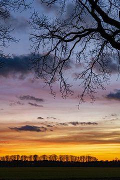 Kleurrijke zonsondergang van Marian Schepens