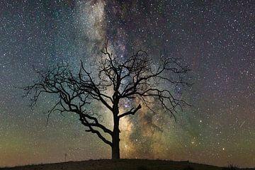 Galaxie sur Ruud de Soet