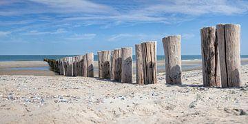 Palen op het strand van Ruth de Ruwe