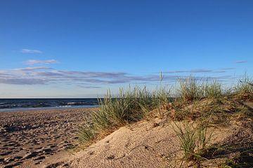 Nach dem Regen van Ostsee Bilder