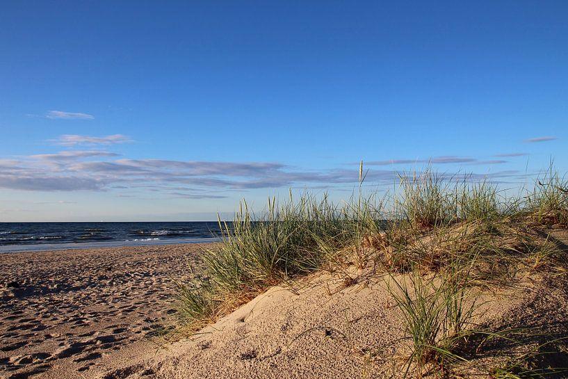 Nach dem Regen von Ostsee Bilder