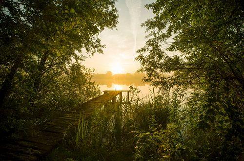 Landschap, zonsopkomst bij steiger in het bos van