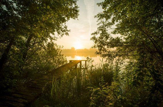 Landschap, zonsopkomst bij steiger in het bos van Marcel Kerdijk