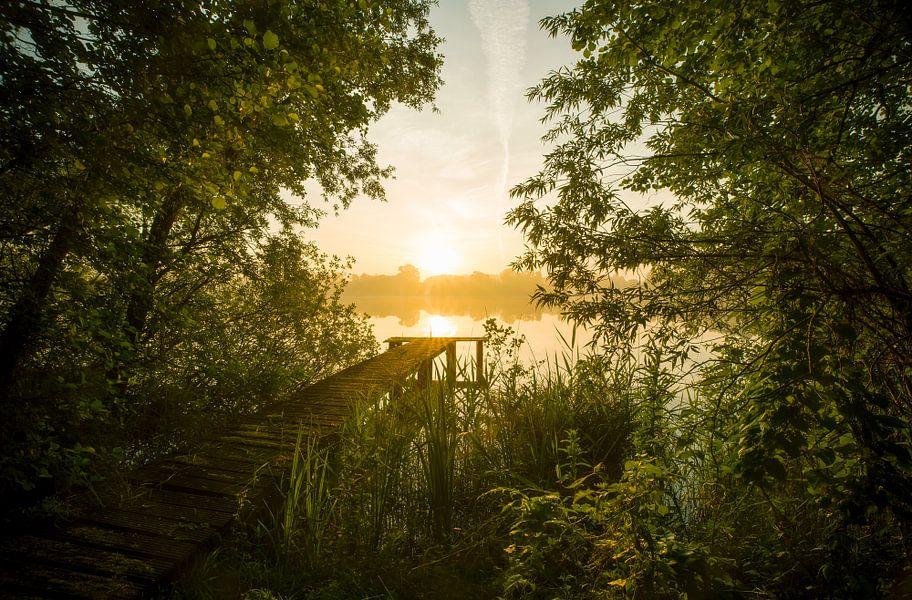 Landschap, zonsopkomst bij steiger in het bos