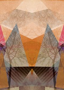 P22-D TREES AND TRIANGLES