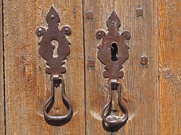 The Door van Alex Davidse