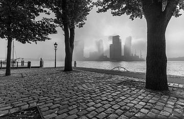 Mistige ochtend in Rotterdam van Peter Hooijmeijer