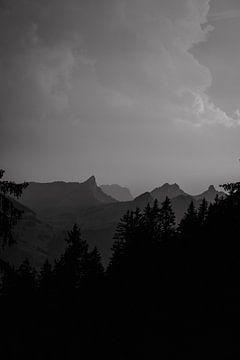 Bergkamm von Nina Haverkamp