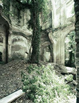 Overgrown Romantica 2 van Kirsten Scholten
