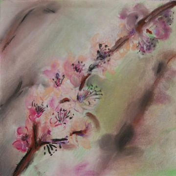 Japanse Lente: bloesemtak in verschillende tinten roze (blossom)