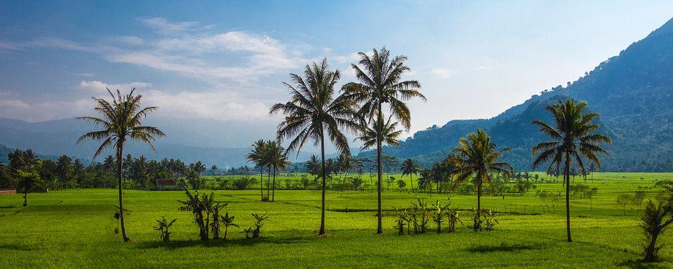Java, Indonesie van Jaap van Lenthe