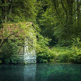 Häuschen am Waldsee von Jürgen Schmittdiel Photography