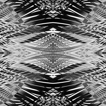 PRETTY BLACK & WHITE LINES PII von Pia Schneider