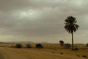 DESERT TUNISIA van