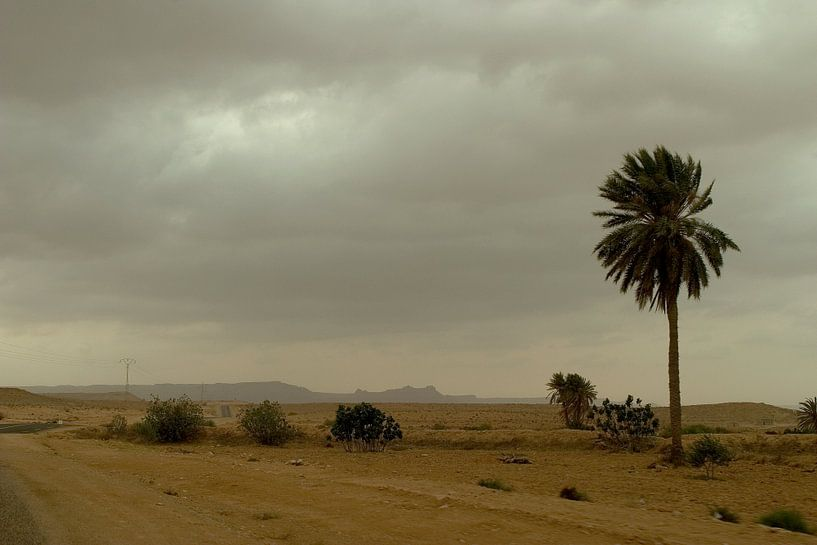DESERT TUNISIA van NICK KIDMAN