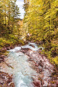 Herbst am Wimbach