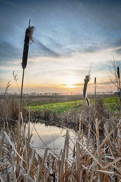 Coucher de soleil aux Pays-Bas