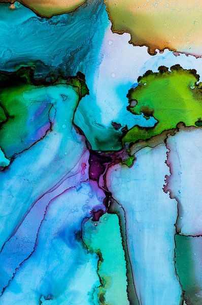 Inkt diverse kleuren van angelique van Riet