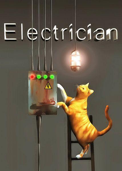 Katten: elektricien van Jan Keteleer
