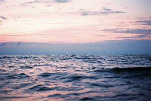 roze zee