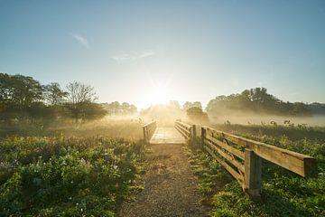 Mistige morgen van Arthur de Groot