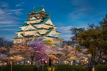 Kasteel van Osaka van Michael Abid
