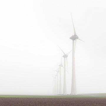 Windmühlen im Nebel bei Urk von Nicky Kapel