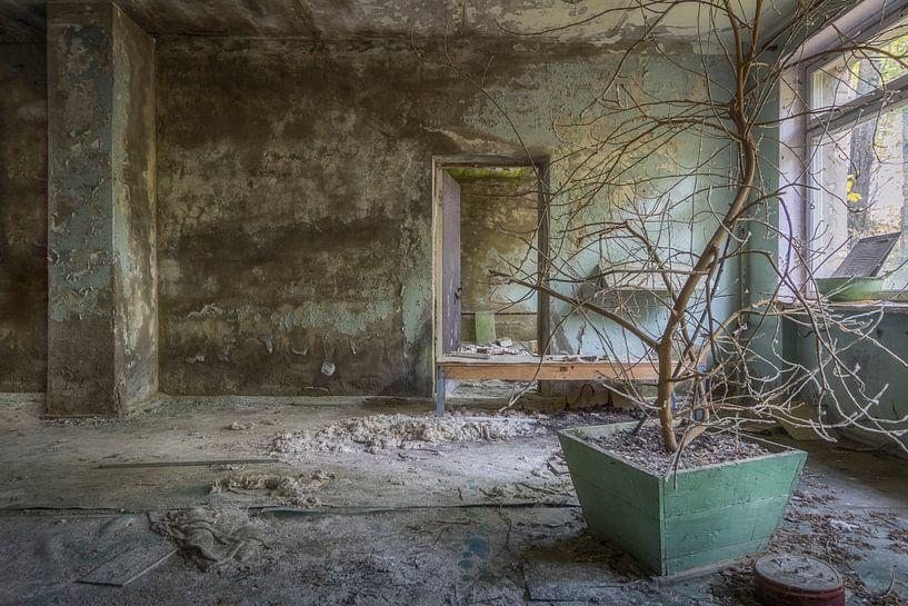 De wachtkamer van Truus Nijland