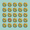 Gekleurde ringen van Marion Tenbergen thumbnail
