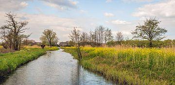 Kleurig Nederlands landschap in het voorjaar van Ruud Morijn