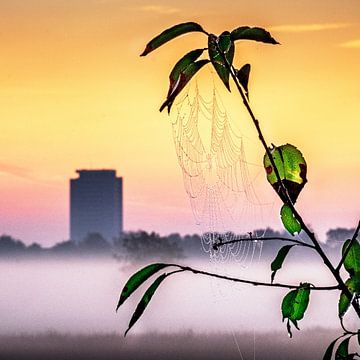 Toile du matin sur Ruud Peters