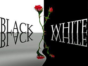 Rot,Weiß und Schwarz von Martina Fornal