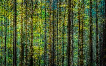 in het bos van Lydia Toerse