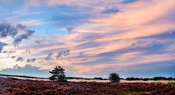 Zonsondergang Loonse en drunense duinen van Dave Verstappen