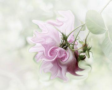 Pastel in Pink van Yvonne Blokland