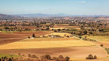 Assisi van Rob Boon