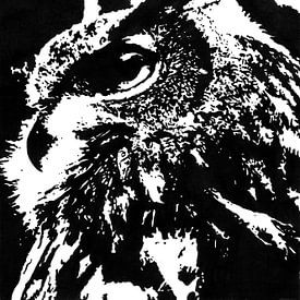 Europese Oehoe (Bubo bubo) zwart wit inkttekening  van Fotojeanique .