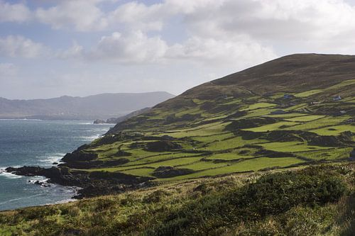 Irish coastal landscape van
